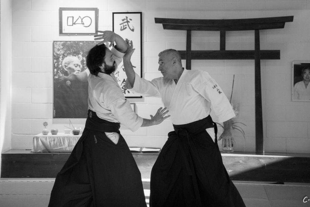 AIKIDO SEMINAR ONLY YUDANSHA – AGGIORNAMENTO TECNICO